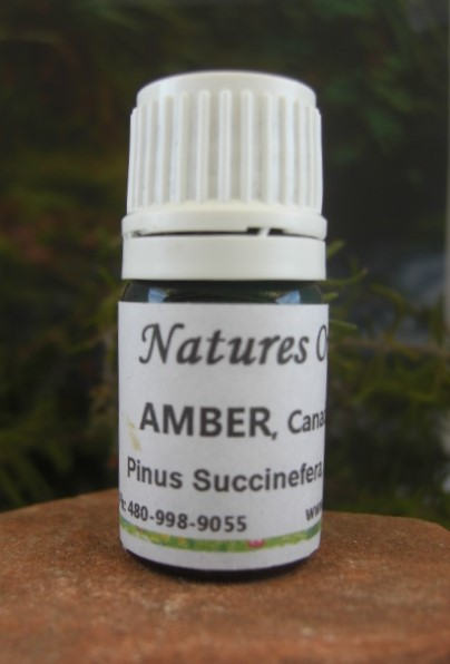 Nature's Oils Amber (absolute)