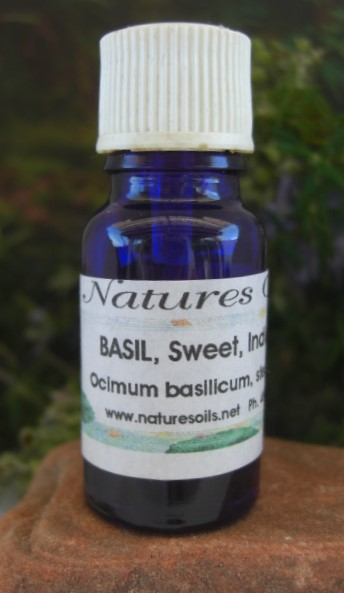 Nature's Oils Basil or Tulsi (Holy)