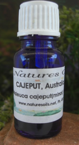 Nature's Oils Cajeput