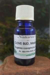 Nature's Oils Clove Bud