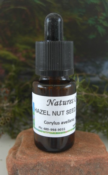 Nature's Oils Hazelnut