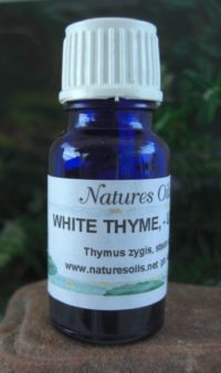Nature's Oils Thyme